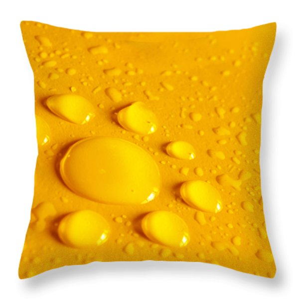 Water Flower Throw Pillow by Carlos Caetano