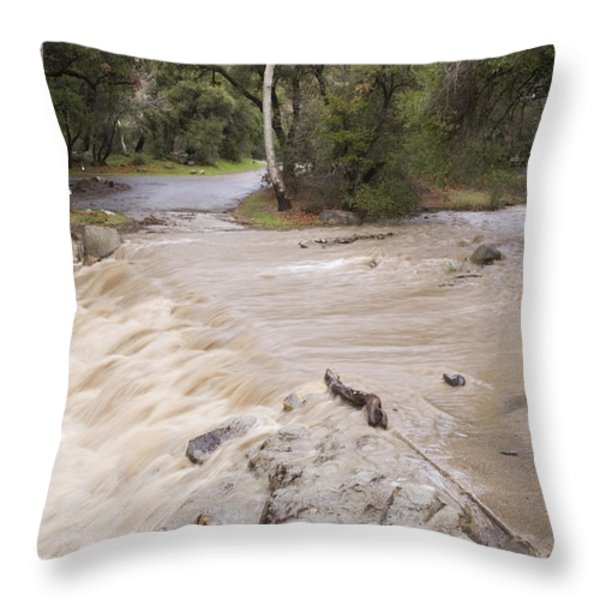 Water Flowing In The North Fork Throw Pillow by Rich Reid
