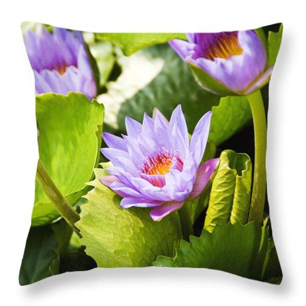 Water Lilies Throw Pillow by Ray Laskowitz - Printscapes
