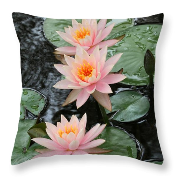 Water Lily Trio Throw Pillow by Sabrina L Ryan