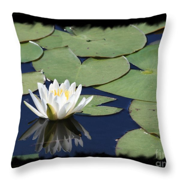 Water Lily With Black Border Throw Pillow by Carol Groenen