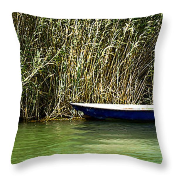 Water Scene Pano Throw Pillow by Svetlana Sewell
