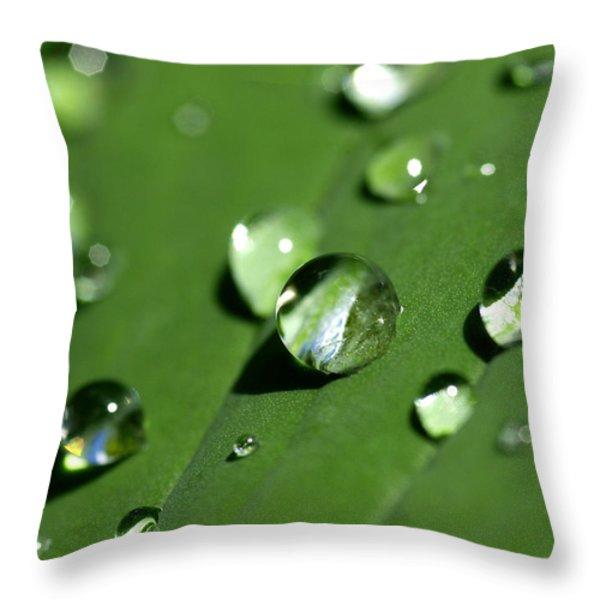 Waterdrops Throw Pillow by Melanie Viola