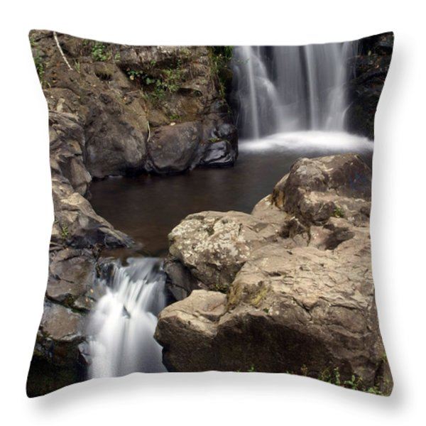 Waterfall 54 Throw Pillow by Marty Koch