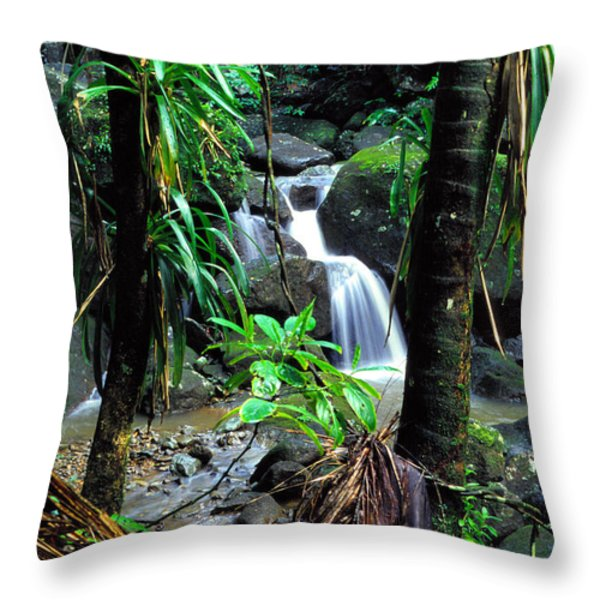 Waterfall El Yunque National Forest Mirror Image Throw Pillow by Thomas R Fletcher