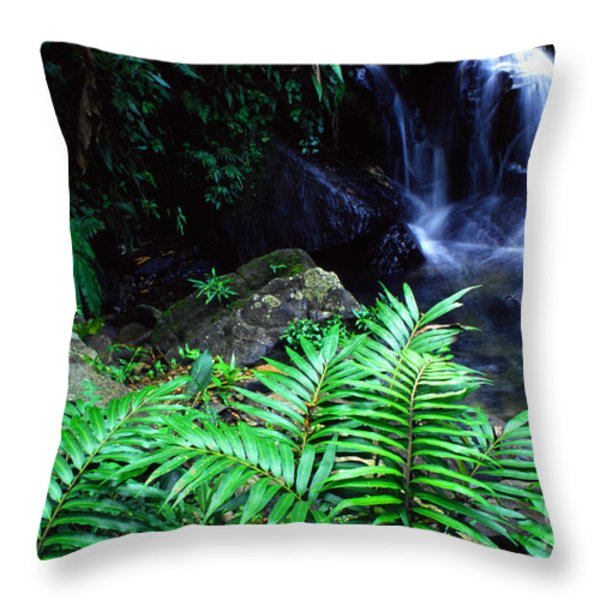 Waterfall El Yunque National Forest Throw Pillow by Thomas R Fletcher