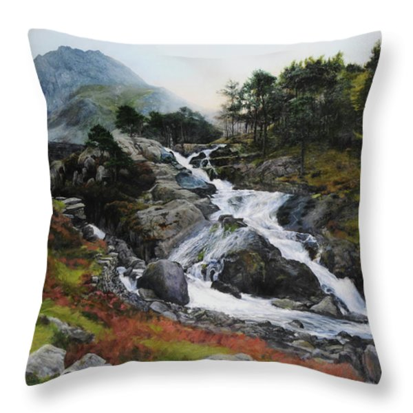 Waterfall In February. Throw Pillow by Harry Robertson