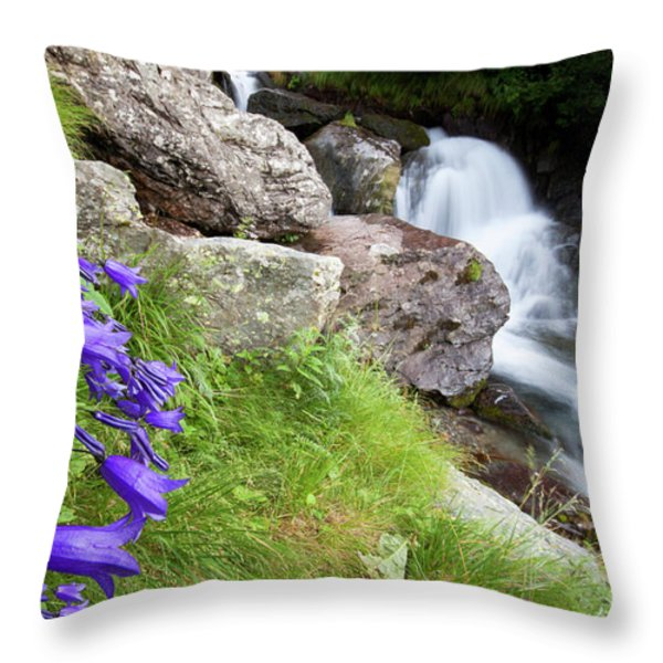 Waterfalls And Bluebells Throw Pillow by Mircea Costina Photography
