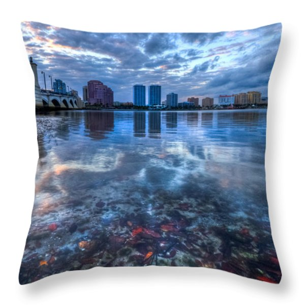 Watery Treasure Throw Pillow by Debra and Dave Vanderlaan