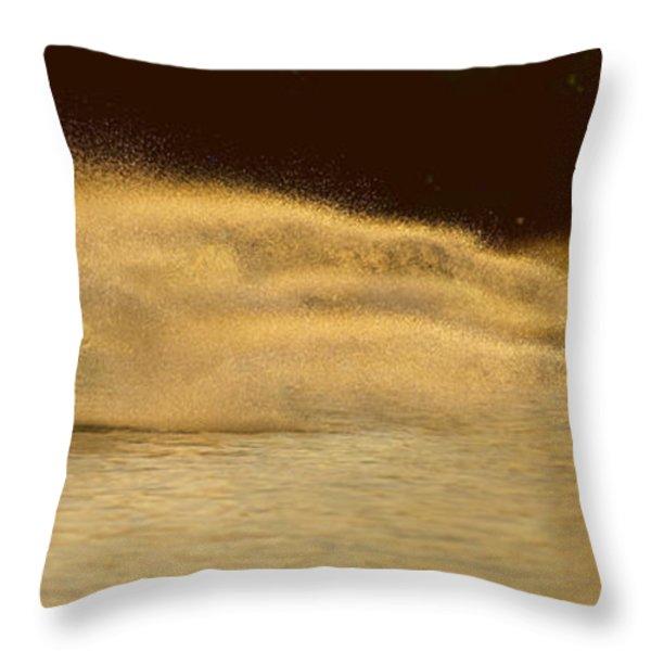 Waverunner Weekend Throw Pillow by Steve Gadomski