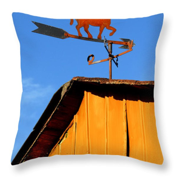 Weathervane Throw Pillow by Robert Lacy