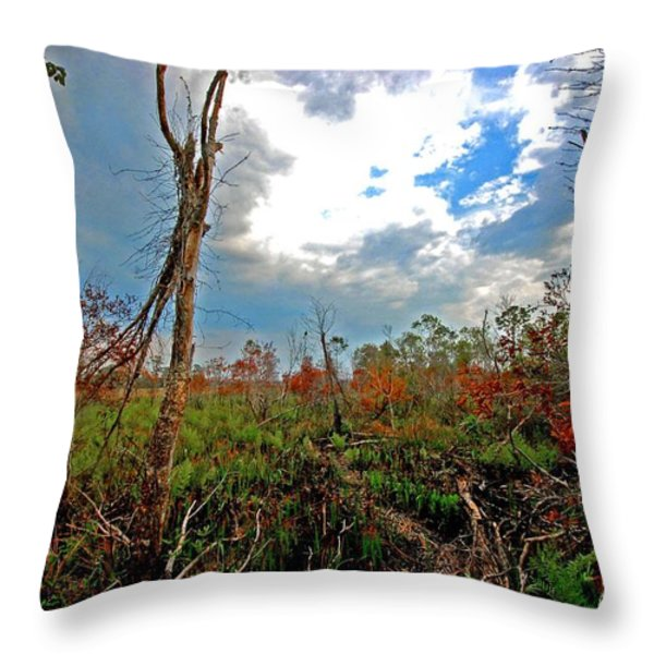 Weeks Bay Swamp Throw Pillow by Michael Thomas