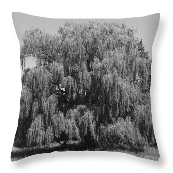 Weeps For Keeps Throw Pillow by Roy Kaelin