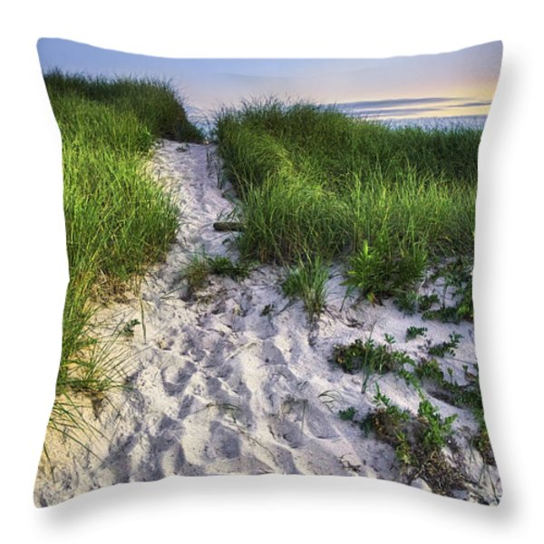 Wellfleet Beach Path Throw Pillow by Tammy Wetzel