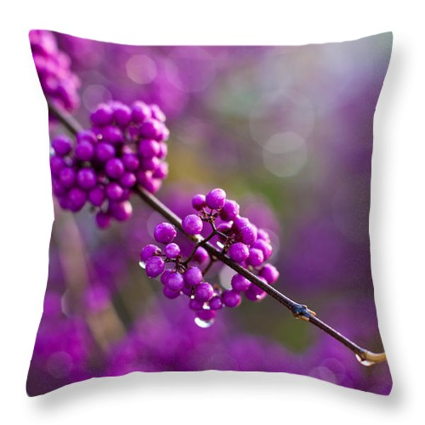 Wet Purple 2 Throw Pillow by Mike Reid