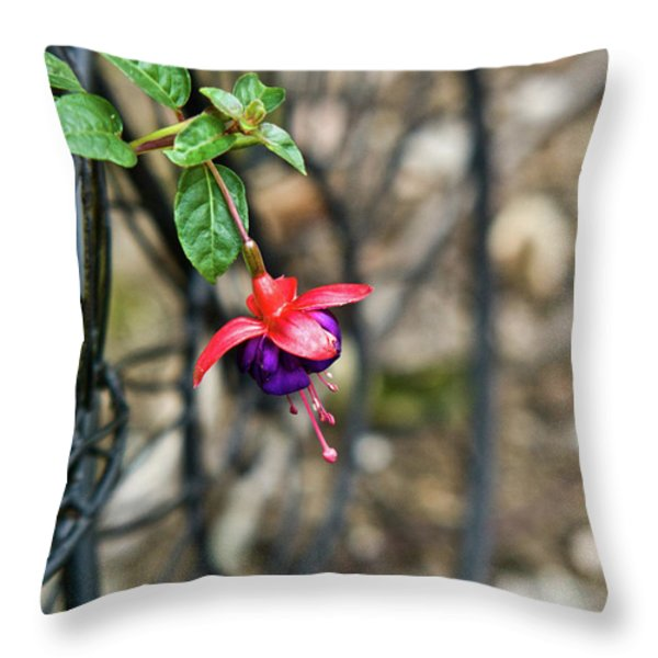 Wheel and Fushia Blossom Throw Pillow by Douglas Barnett