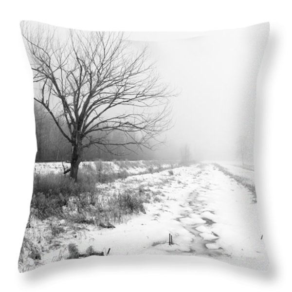 When Winter Comes Throw Pillow by Cathy  Beharriell