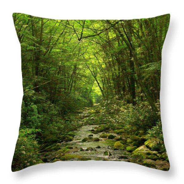 Where It Leads Throw Pillow by M J Glisson
