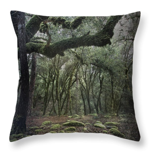 Where The Wild Hearts Roam Throw Pillow by Laurie Search