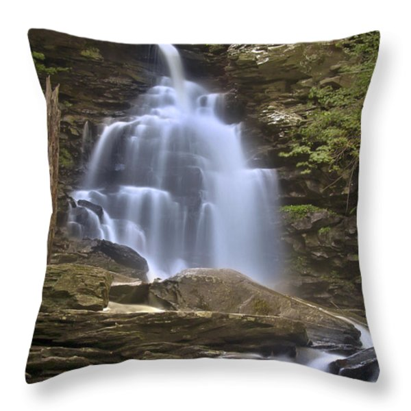 Where Waters Flow Throw Pillow by Evelina Kremsdorf