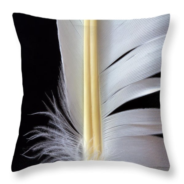 White Feather Throw Pillow by Bob Orsillo