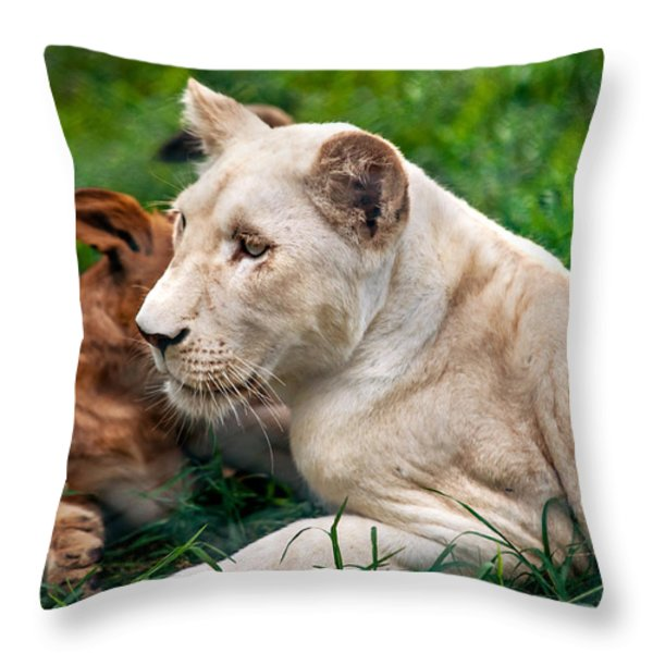 White Lion Cub Throw Pillow by Jenny Rainbow