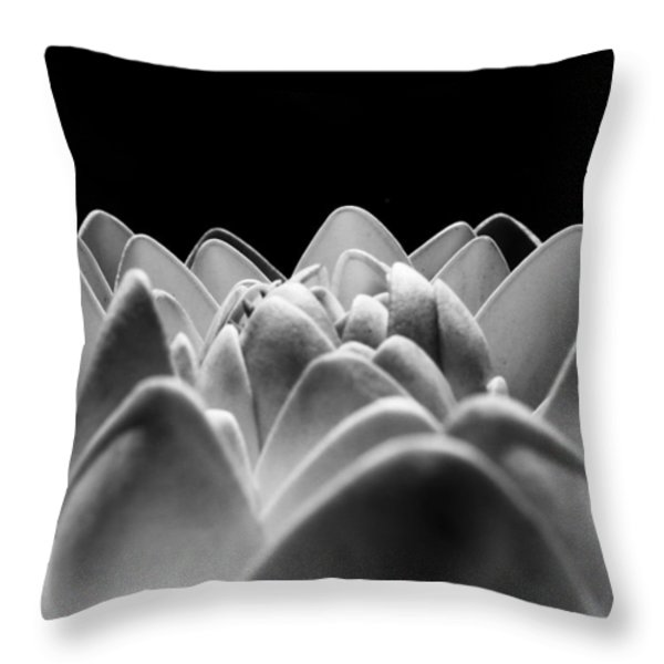 White Lotus In Night Throw Pillow by Sumit Mehndiratta