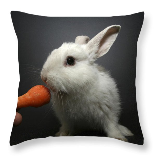 white rabbit  Throw Pillow by Yedidya yos mizrachi