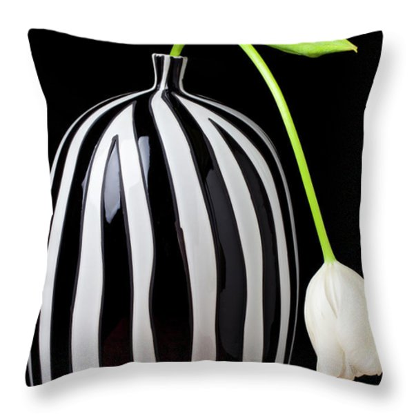 White tulip in striped vase Throw Pillow by Garry Gay