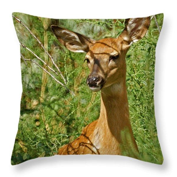 Whitetail Doe Painterly Throw Pillow by Ernie Echols
