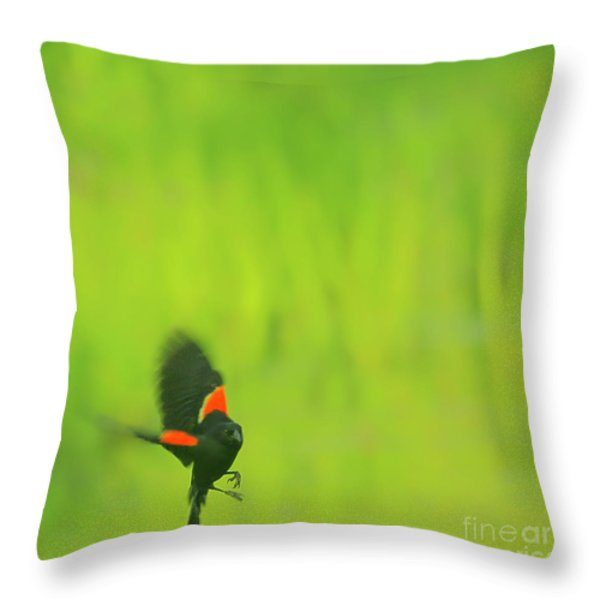 Who are you looking at Throw Pillow by Aimelle