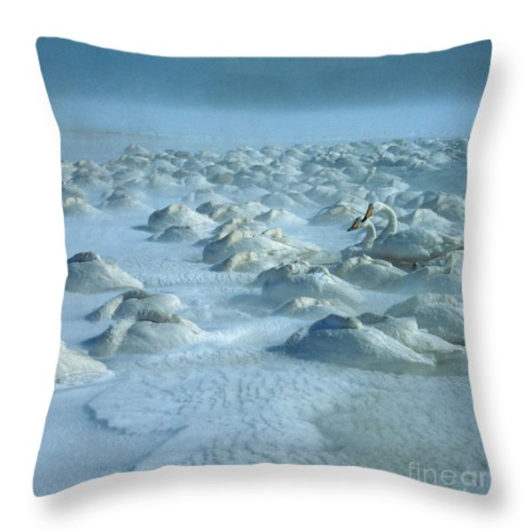 Whooper Swans in Snow Throw Pillow by Teiji Saga and Photo Researchers