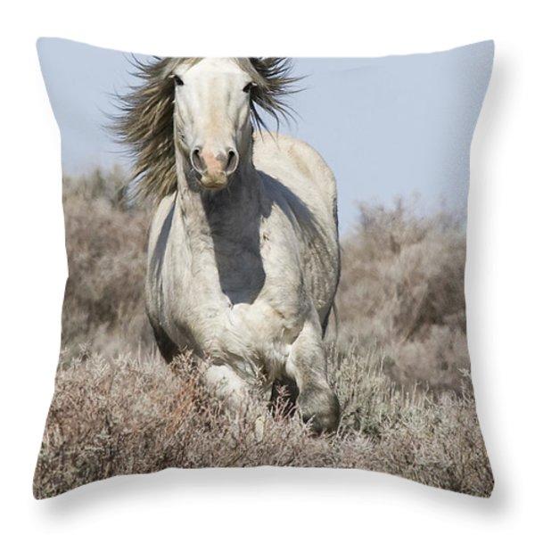 Wild Grey Stallion Runs Close Throw Pillow by Carol Walker