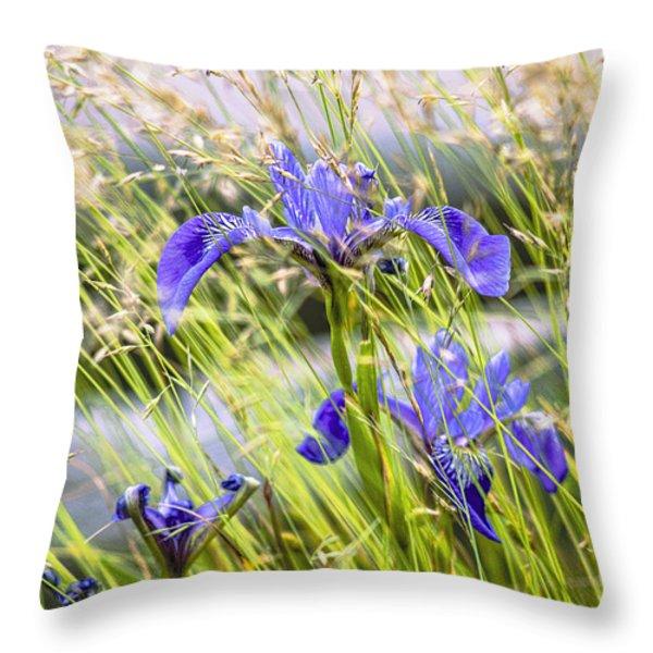 Wild Irises Throw Pillow by Marty Saccone