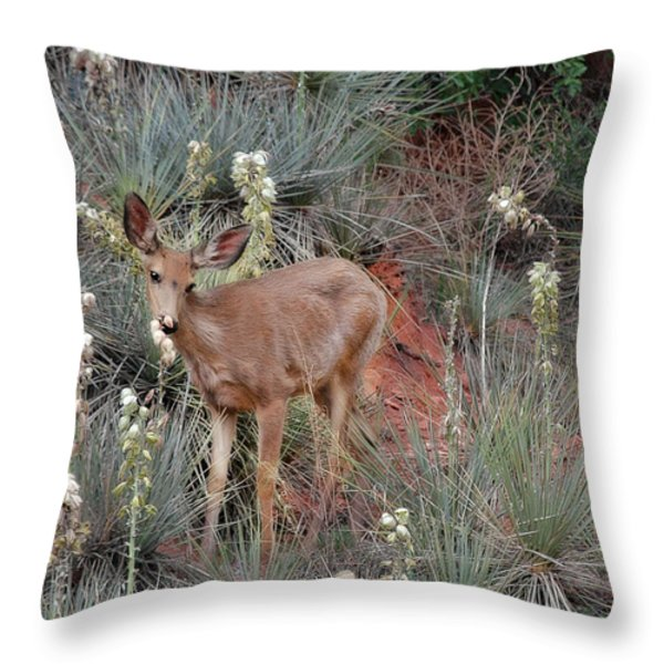 'Wild' Times at Garden of the Gods Colorado Throw Pillow by Christine Till