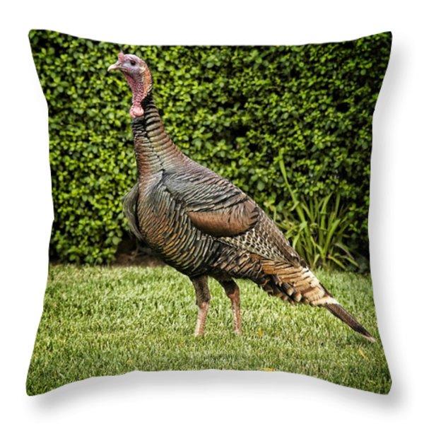 Wild Turkey Throw Pillow by Kelley King