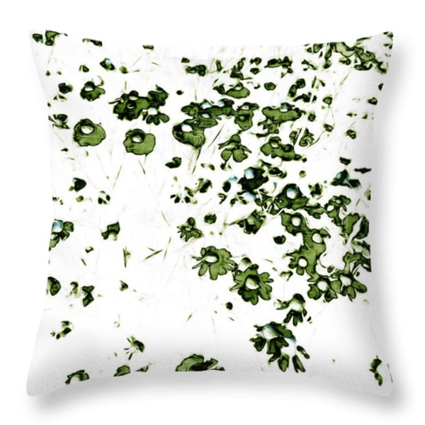 Throw Pillow featuring the painting Wildflower Meadow by Frank Tschakert