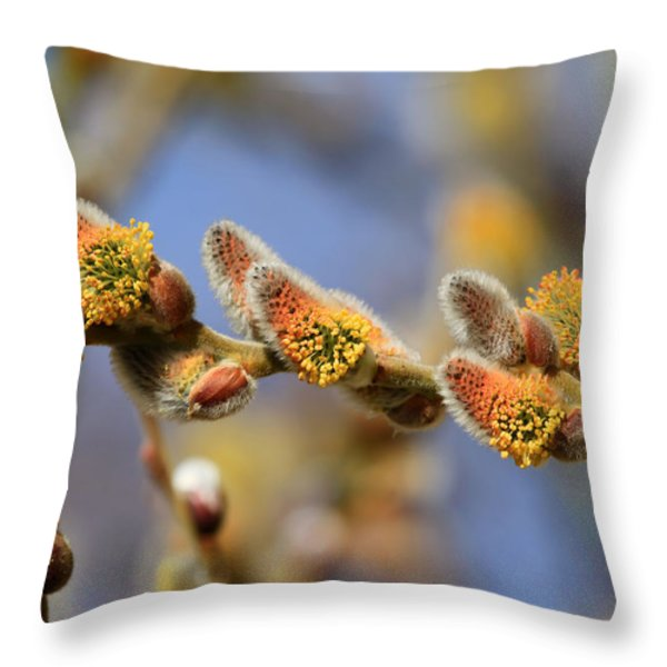 Willow Buds Throw Pillow by Donna Kennedy