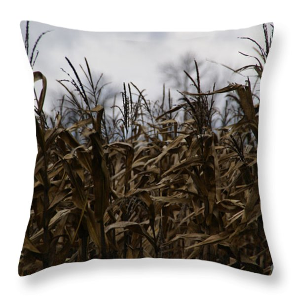 Wind Blown Throw Pillow by Linda Knorr Shafer