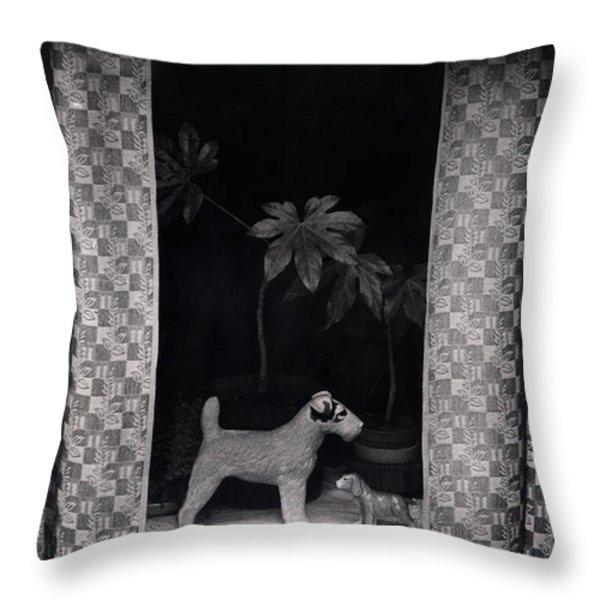 Window Scene Throw Pillow by Charles Stuart