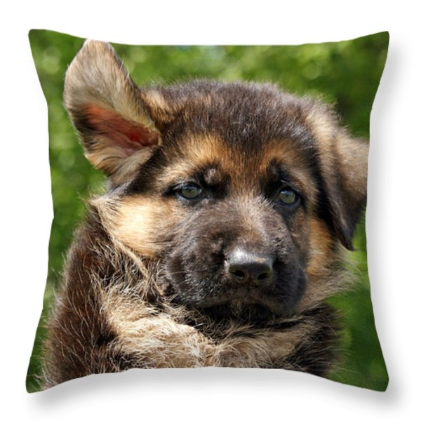 Windy Day Throw Pillow by Sandy Keeton