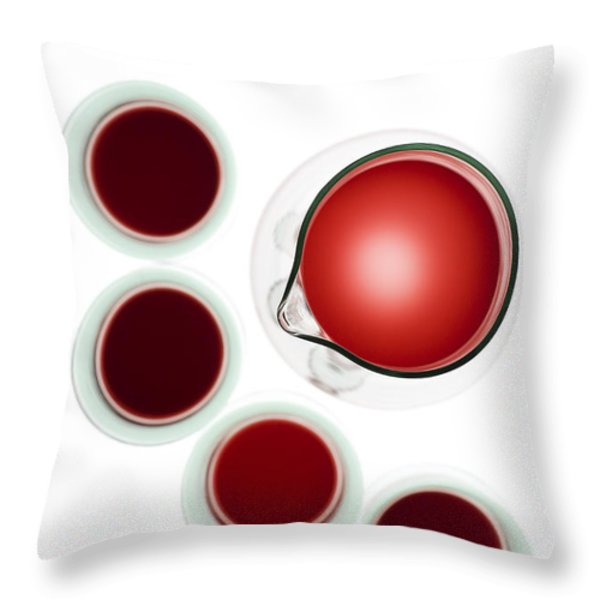 Wine decanter and glasses Throw Pillow by Frank Tschakert