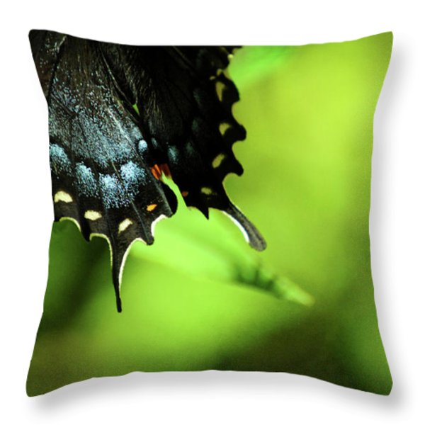 Wings Throw Pillow by Rebecca Sherman