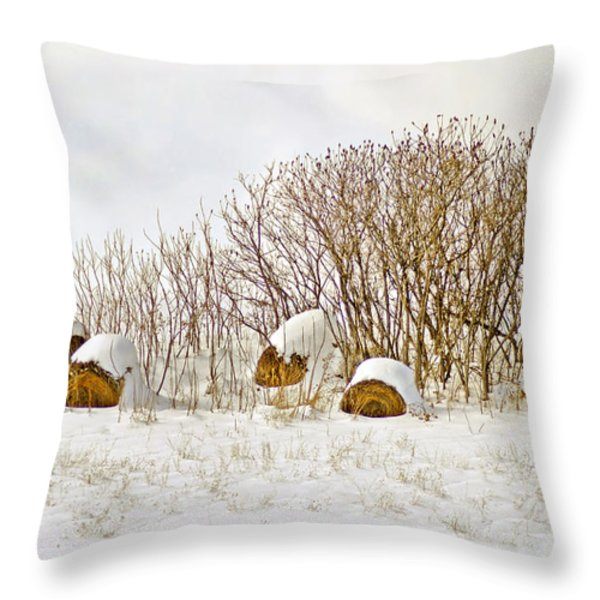 Winter Beauty Throw Pillow by Deborah Benoit