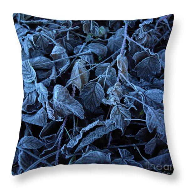 Winter Throw Pillow by Bernard Jaubert
