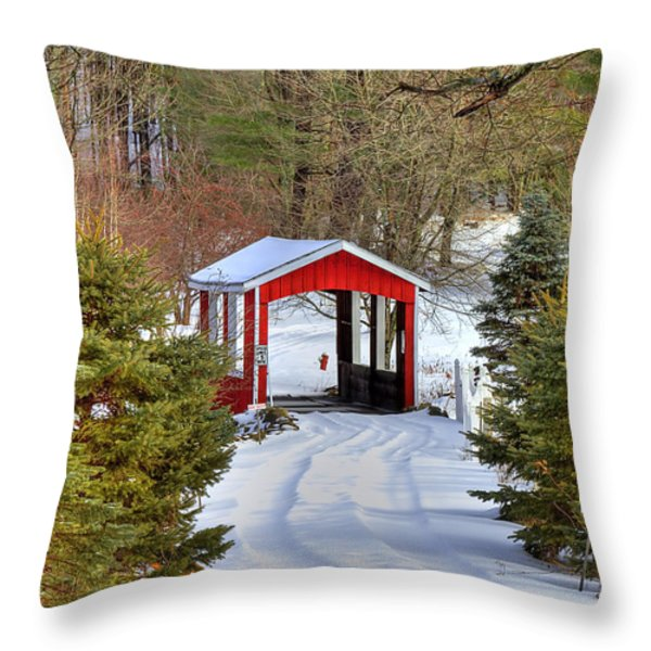 Winter Crossing Throw Pillow by Evelina Kremsdorf