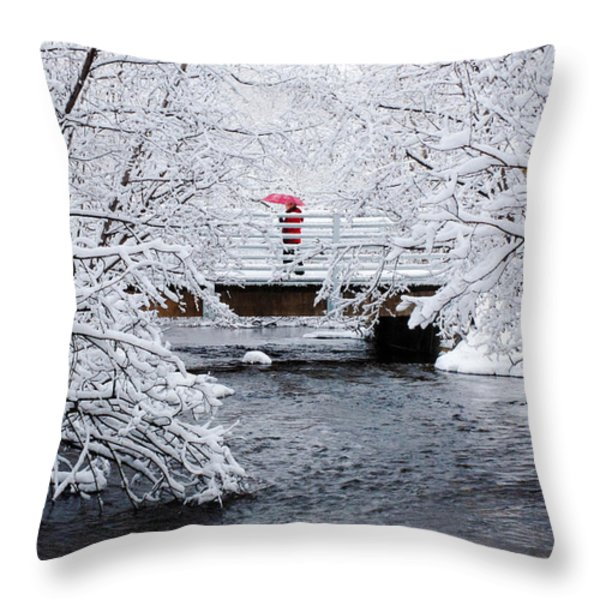 Winter Crossing Throw Pillow by Ron Day