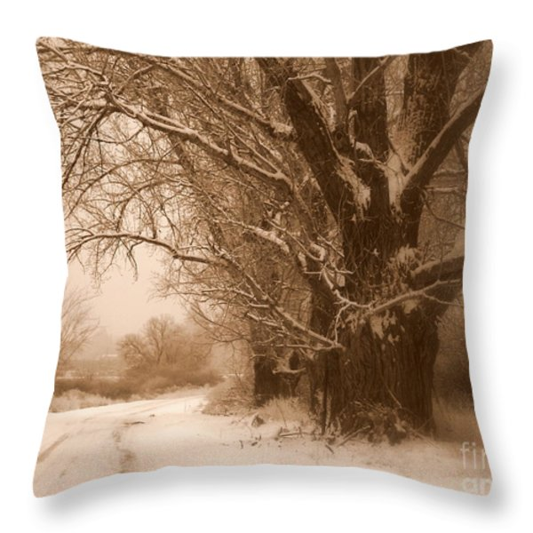 Winter Dream Throw Pillow by Carol Groenen