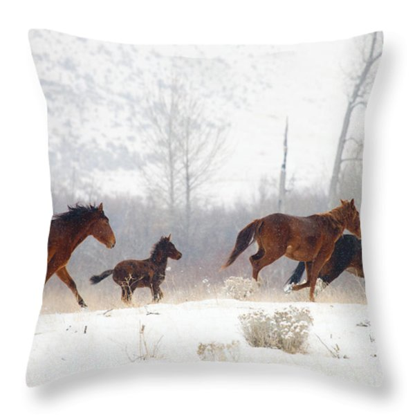 Winter Gallop Throw Pillow by Mike  Dawson
