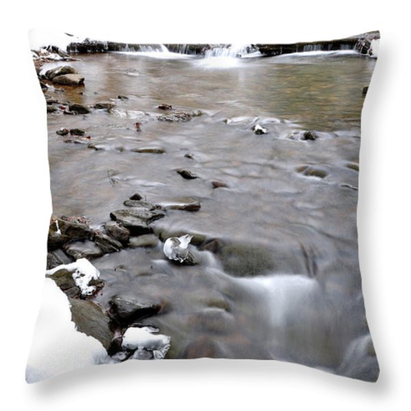 Winter Monongahela National Forest Throw Pillow by Thomas R Fletcher